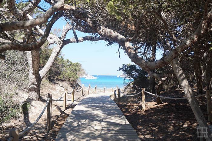 Playa_de_Cavall d´en Borrás2