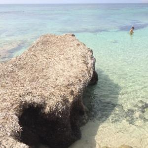 Playa_Migjorn1