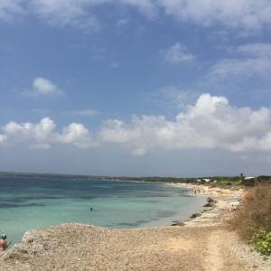 Playa_Migjorn2
